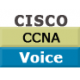 CCNA Voice - Implementing Cisco IOS Unified Communications (ICOMM v8.0)